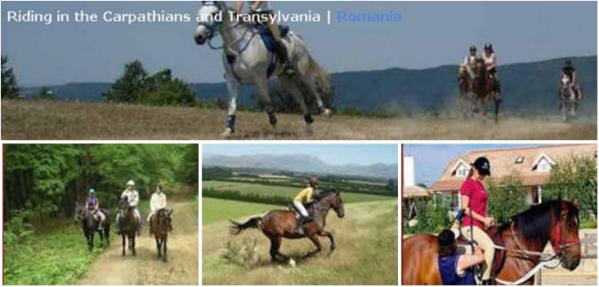 equestrian_centre
